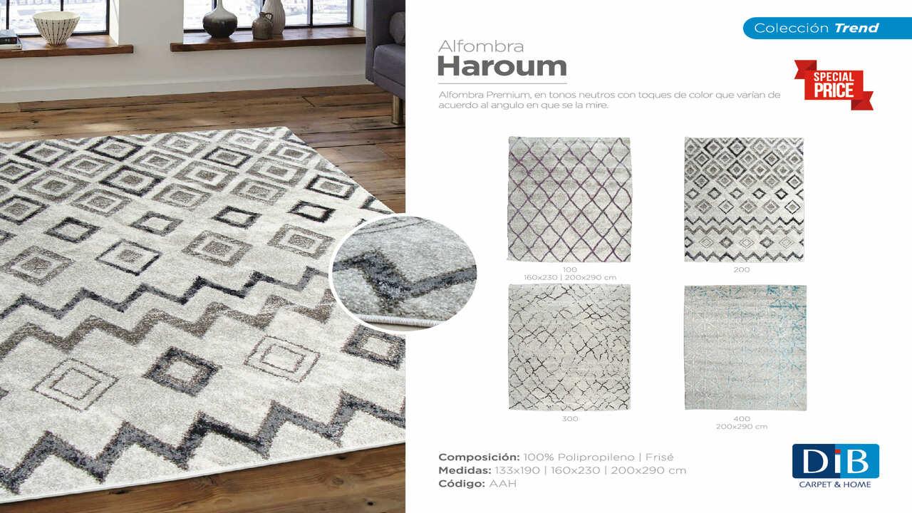 Haroum-ficha2018-01