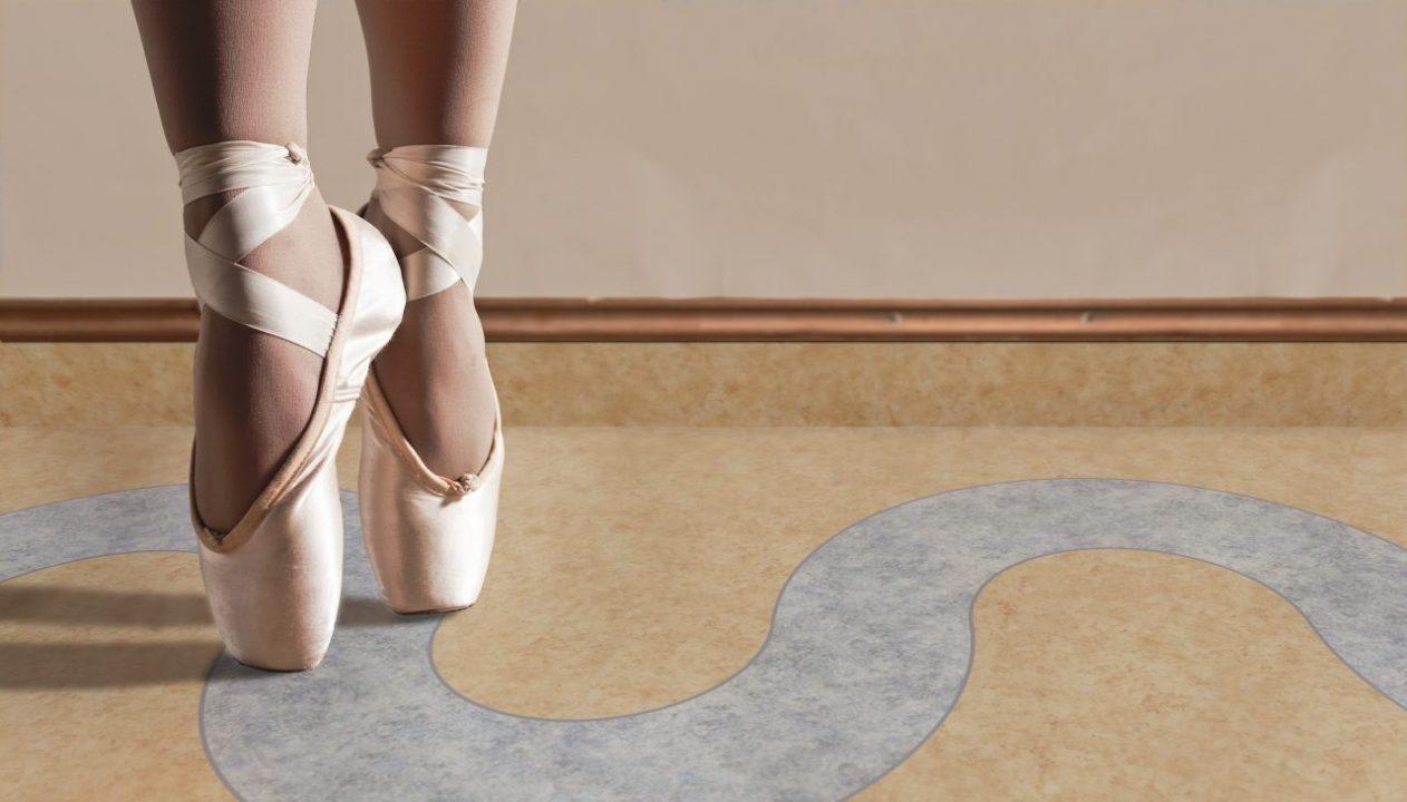 Ballet Shoes on Wooden Floor