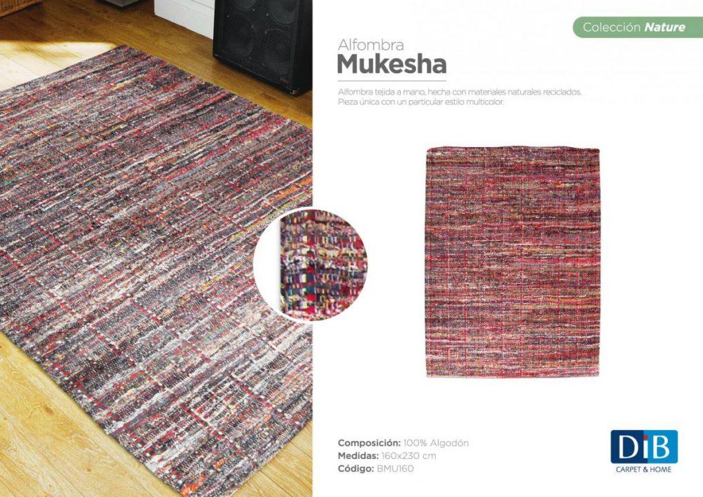 MUKESHA-2017-01