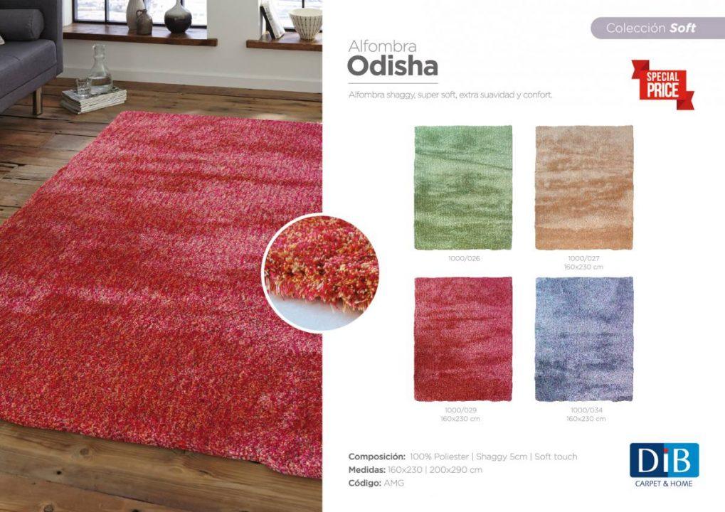 odisha-ficha2016-01